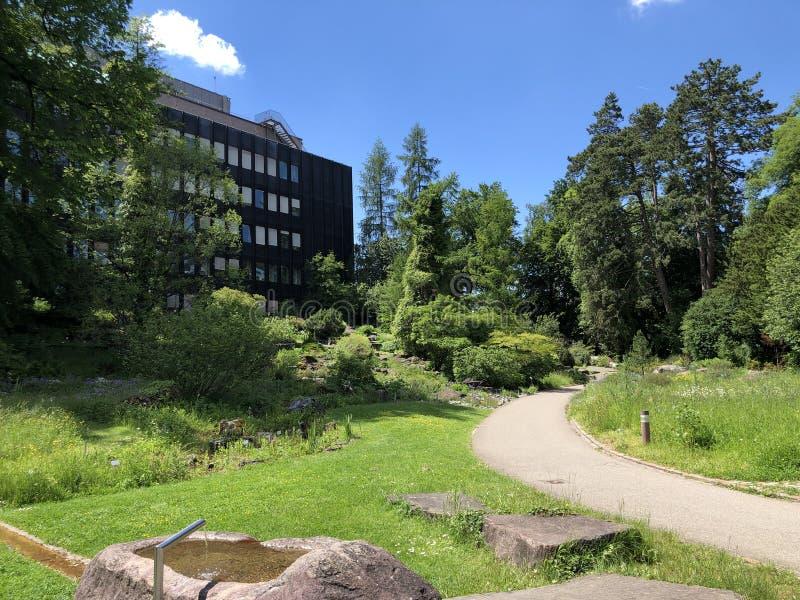 Le bâtiment de l'institut - jardin botanique de l'université du der Universitaet Zurich de Zurich ou de Botanischer Garten images stock