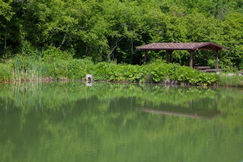 Le bâtiment près de la rivière et de la forêt image libre de droits