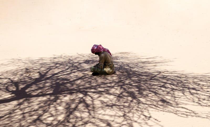 Le bédouin s'assied et prie dans le sable à la nuance d'un arbre dans le désert en Egypte Dahab Sinai du sud image stock