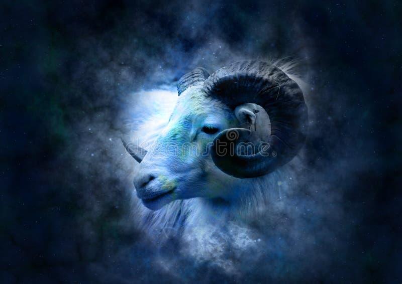 Le Bélier de signe de zodiaque dans le ciel étoilé photos libres de droits