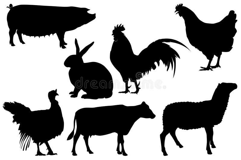 Le bétail de volaille de ferme silhouette l'ensemble illustration stock