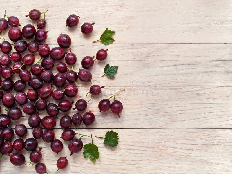 Le bacche fresche dell'uva spina sono sparse sui precedenti della b fotografia stock libera da diritti