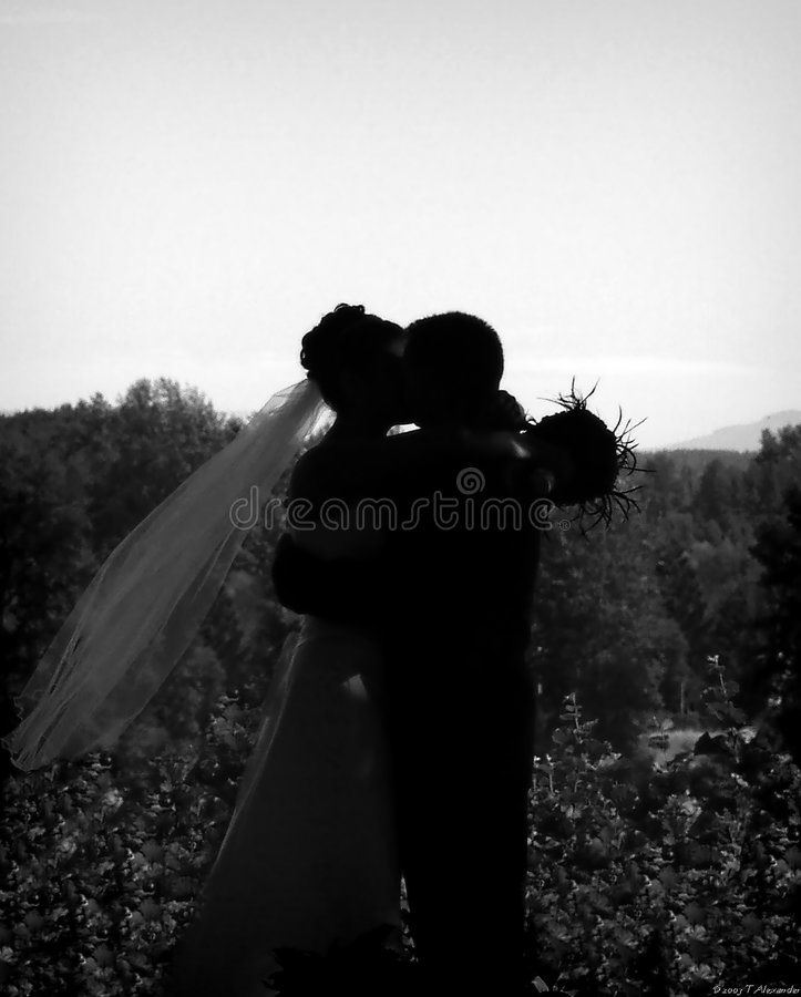 Le baiser photos stock