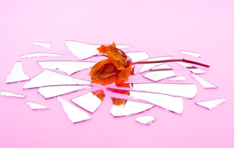 Le baiser par Rose fanée est amour brisé images stock