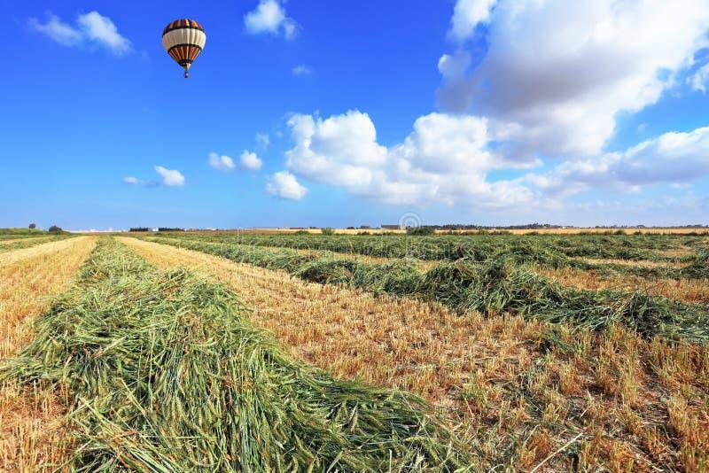 Le ballon vole au-dessus d'une zone de blé photo stock