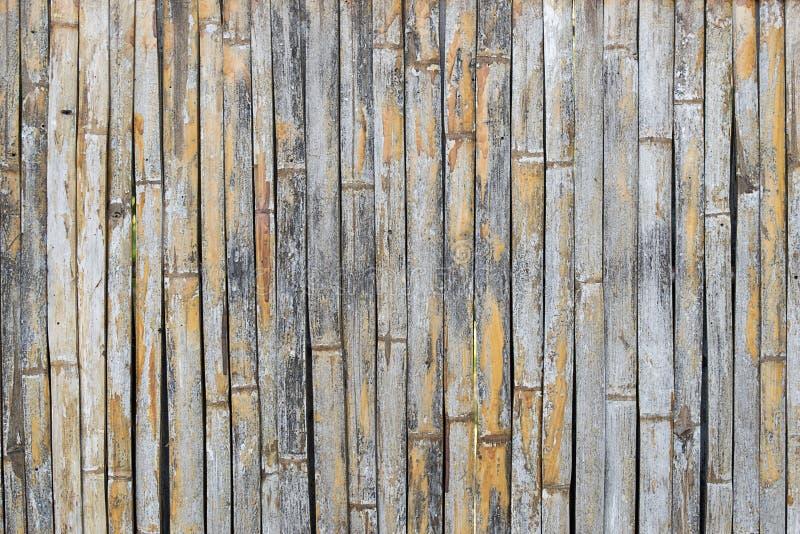 Le bambou sec colle le mur pour le fond photos libres de droits