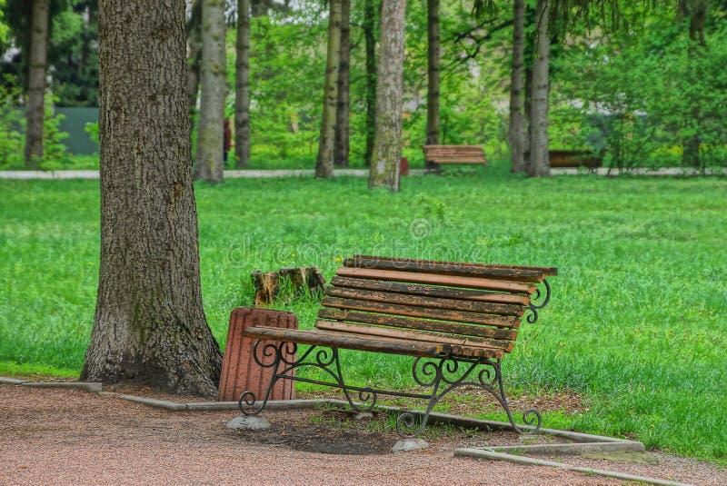le banc en bois brun et une urne se tiennent sur une allée en parc parmi l'herbe verte image stock