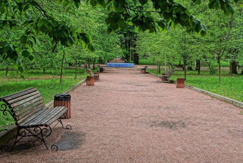 le banc en bois brun et une urne se tiennent sur une all?e en parc parmi l'herbe verte image stock