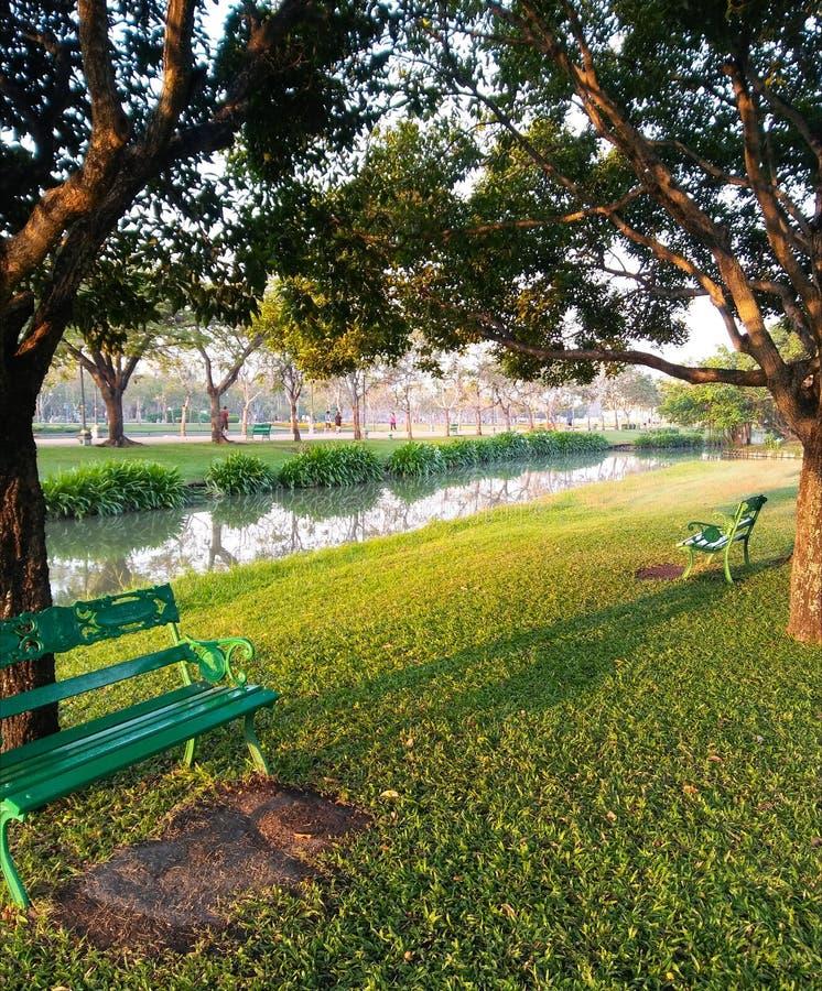 Le banc vert de fer sous des arbres s'approchent du bord de l'eau au parc Bangkok de Suanluang photographie stock libre de droits