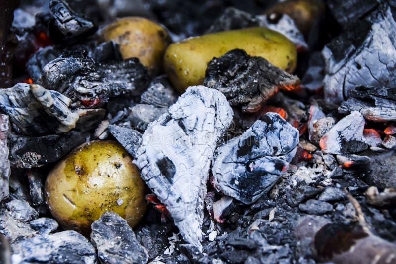 Le barbecue sur la nature dans les pommes de terre d'été se situent en charbons chauds images stock