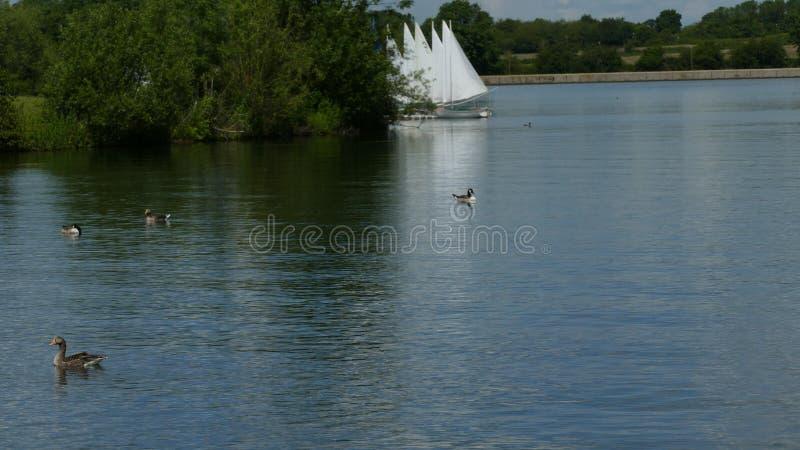Le barche sono pronte a rotolare fotografia stock