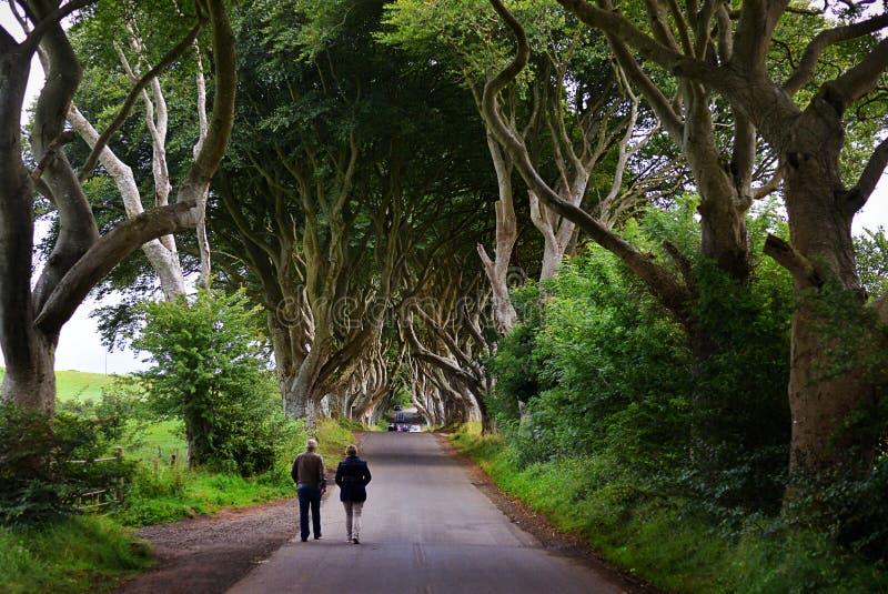 Le barriere scure, Irlanda del Nord fotografie stock libere da diritti