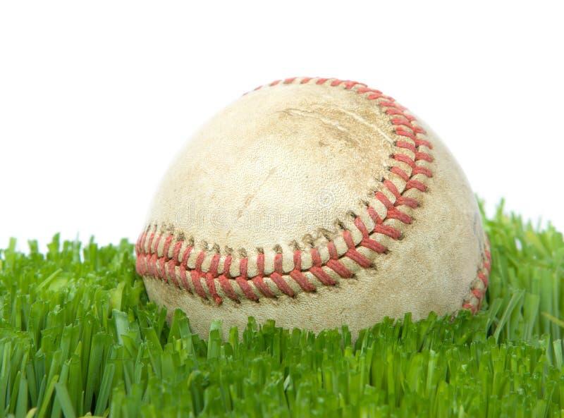 Le base-ball dans la fin d'herbe vers le haut images libres de droits