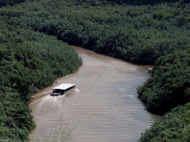 Le bateau voyage rivière de Wailua photographie stock