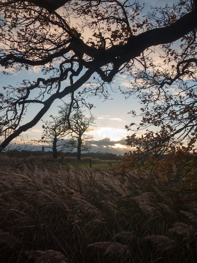 Le beau blanc ouvert de ciel bleu de l'espace de campagne de paysage opacifie image stock