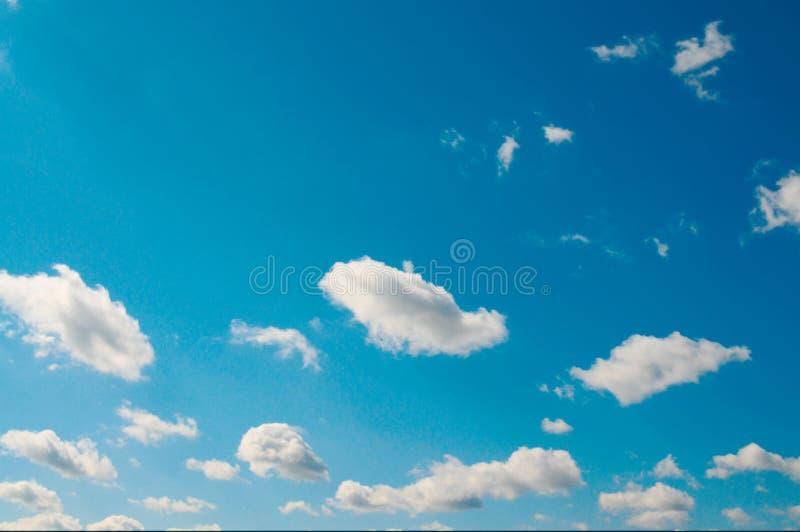 le beau bleu opacifie le blanc de ciel photos libres de droits