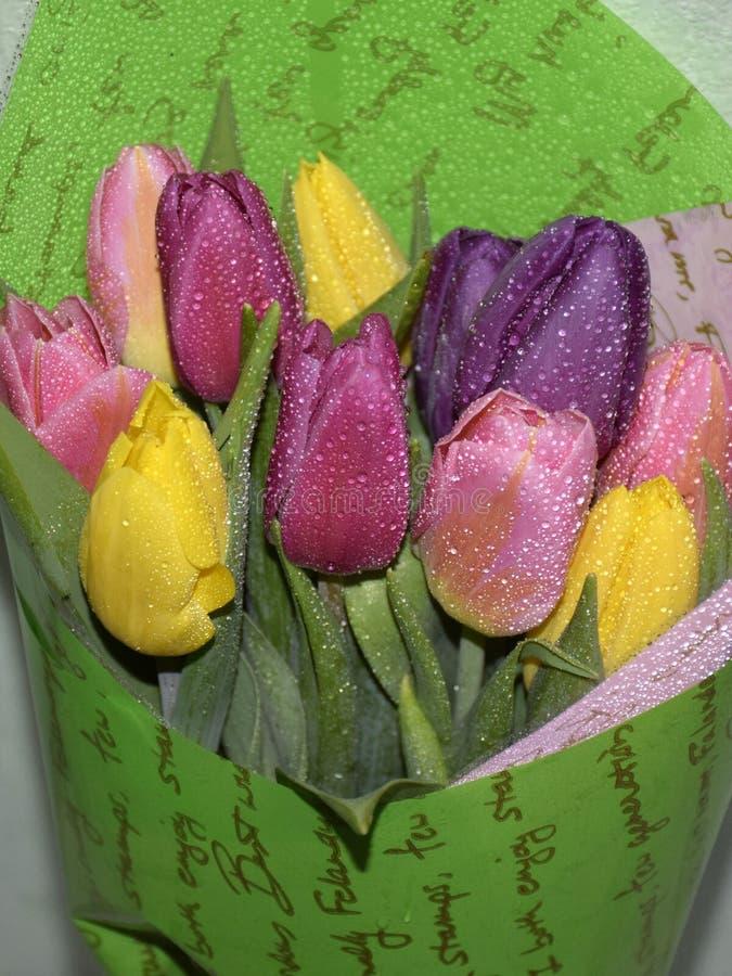 Le beau bouquet des tulipes colorées a enveloppé le Livre vert photographie stock