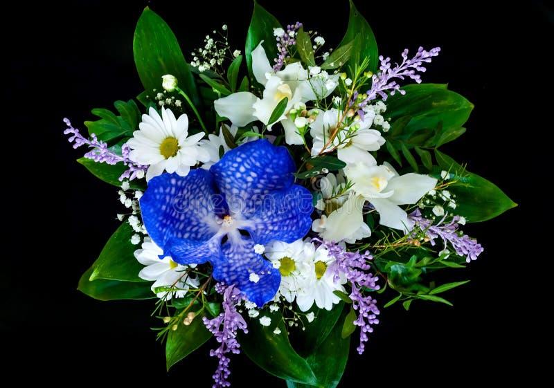 Le beau bouquet du ressort fleurit sur le fond noir, concept de composition de fête, l'espace de copie, plan rapproché photos libres de droits