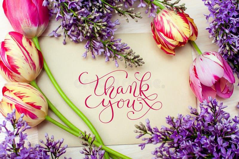 Le beau cadre des lilas et les tulipes pour la carte de voeux avec des mots vous remercient photographie stock libre de droits