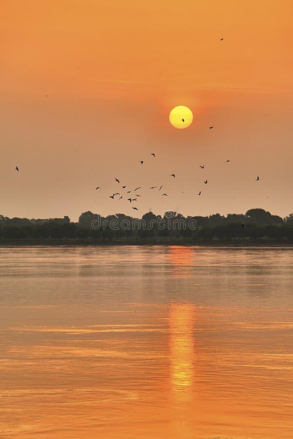 Le beau coucher du soleil coloré au-dessus de Dal Lake avec une volée des oiseaux pris de Nishat Bagh fait du jardinage à Srinaga image libre de droits