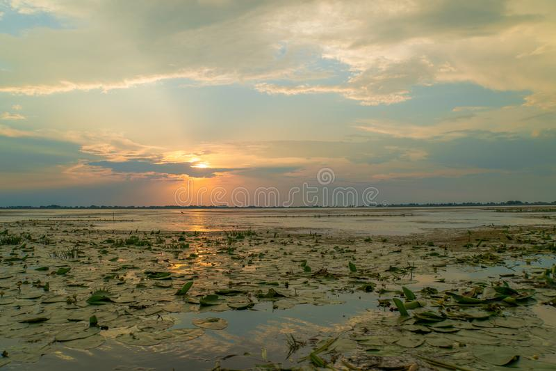 Le beau coucher du soleil d'été avec la lumière du soleil s'est reflété dans l'eau d'un lac photo libre de droits