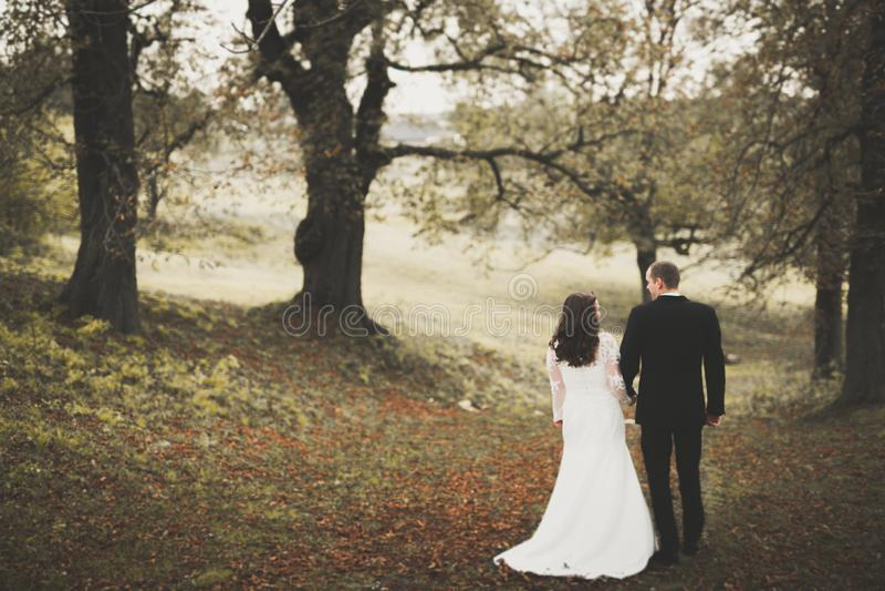 Le beau jeune couple de mariage est embrassant et souriant en parc photo stock