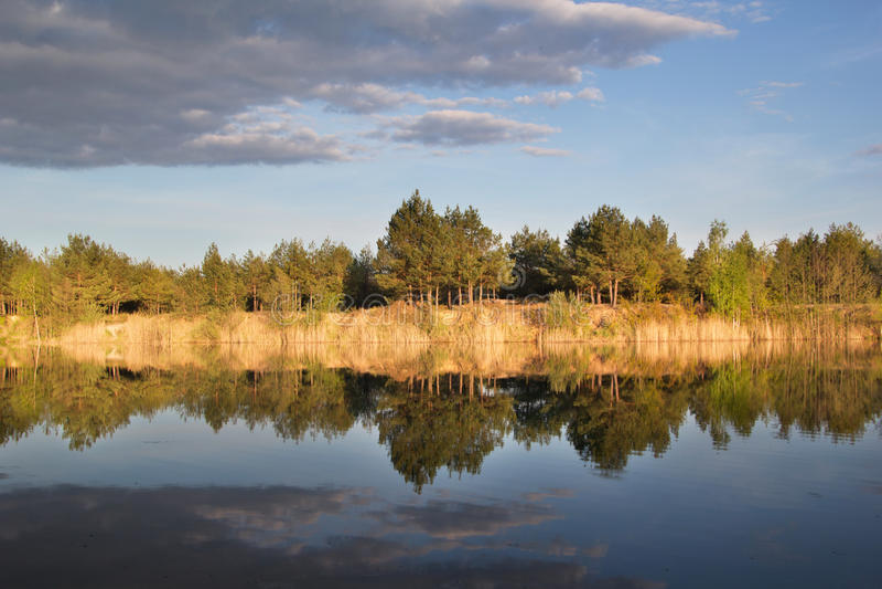Le beau lac clair près de la forêt photographie stock libre de droits