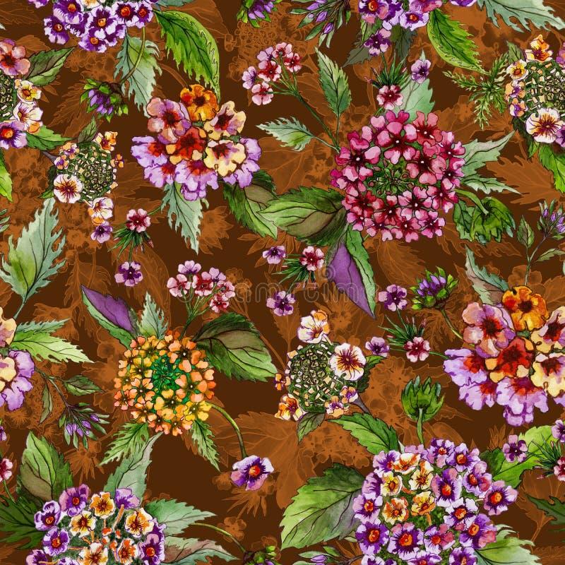 Le beau lantana fleurit avec les feuilles vertes sur le fond brun et orange Configuration florale sans joint Peinture d'aquarelle illustration libre de droits