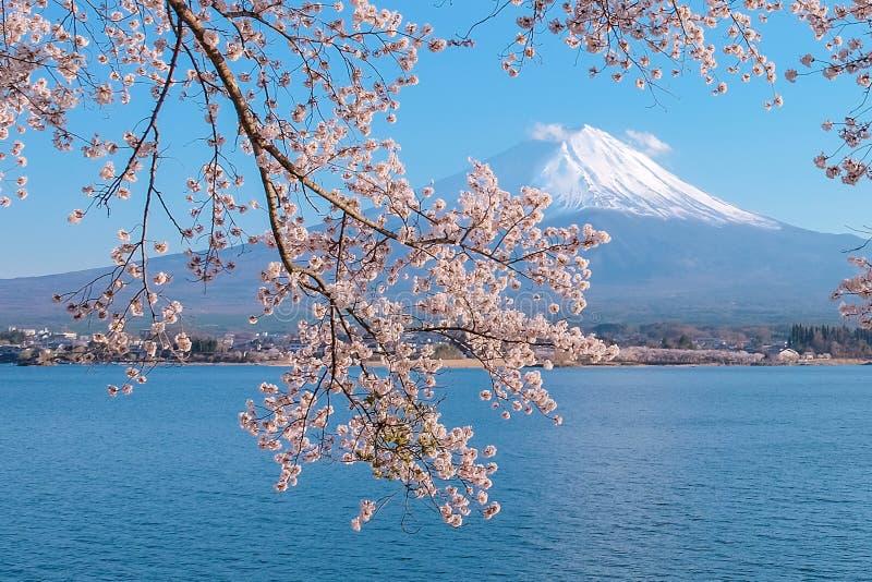 Le beau mont Fuji avec la neige a couvert et ciel bleu au kawaguchiko de lac, Japon photo libre de droits
