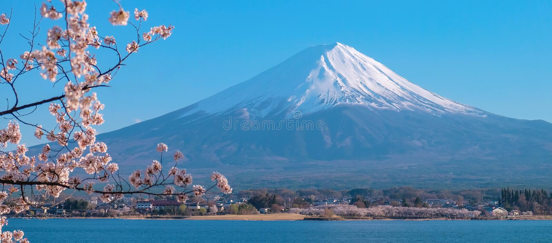 Le beau mont Fuji avec la neige a couvert et ciel bleu au kawaguchiko de lac, Japon photos libres de droits