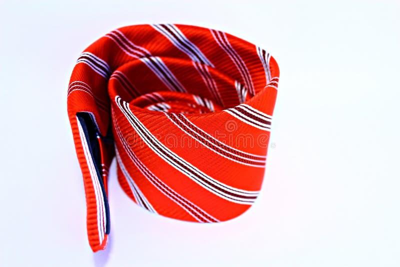 Le beau noeud papillon rouge photographie stock libre de droits