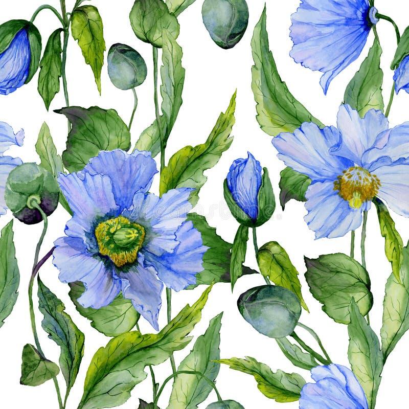 Le beau pavot bleu fleurit avec les feuilles vertes sur le fond blanc Configuration florale sans joint Peinture d'aquarelle illustration stock