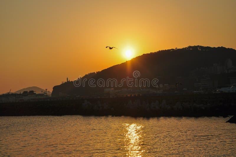 Le beau paysage de lever de soleil photo libre de droits