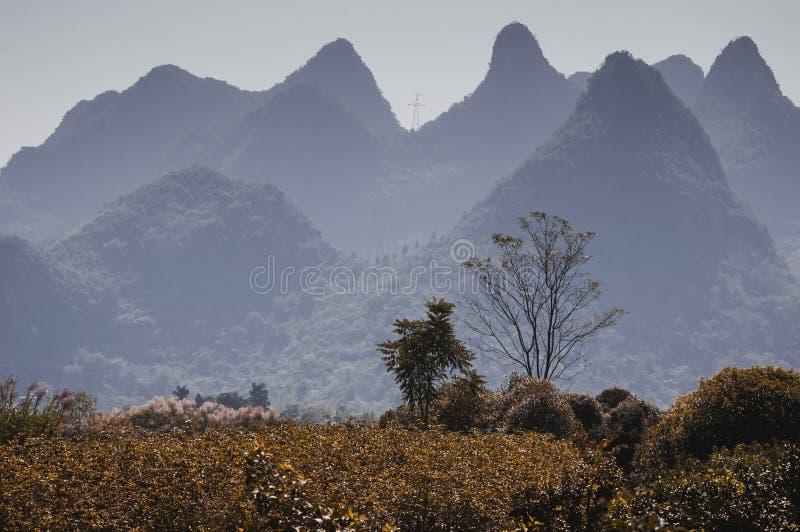 Le beau paysage de montagnes en été photo libre de droits