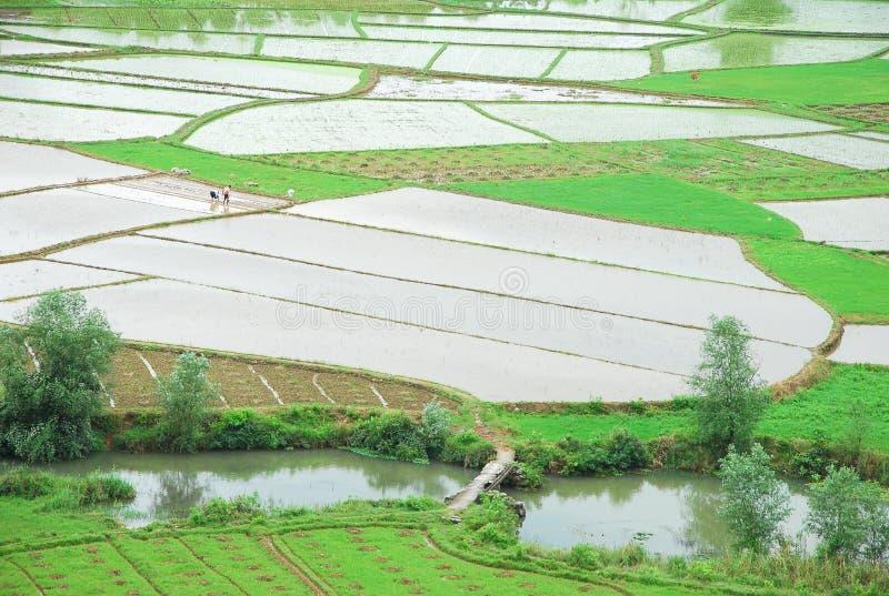Le beau paysage rural au printemps images libres de droits