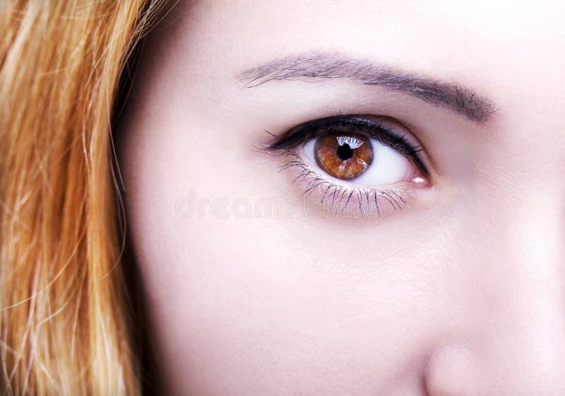 Le beau ` perspicace s de femme de brun de regard observe photographie stock libre de droits