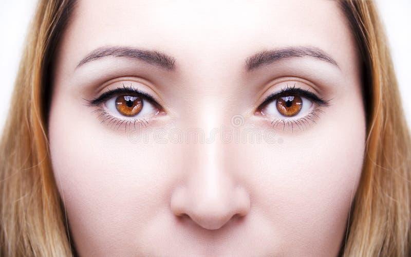 Le beau ` perspicace s de femme de brun de regard observe images stock