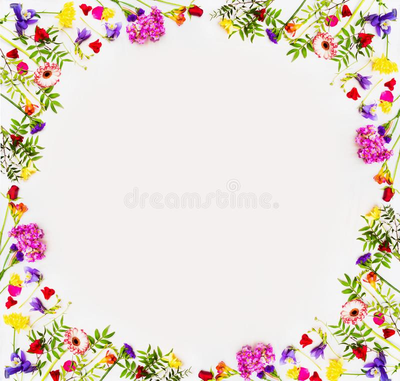 Le beau printemps fleurit le fond avec la fleur colorée, vue supérieure, cadre Concept de nature de printemps, endroit de cadre p photo stock