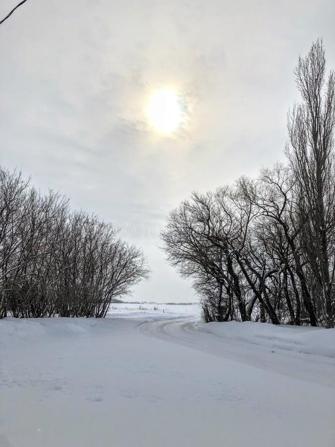 Le beau soleil dans l'horaire d'hiver images stock