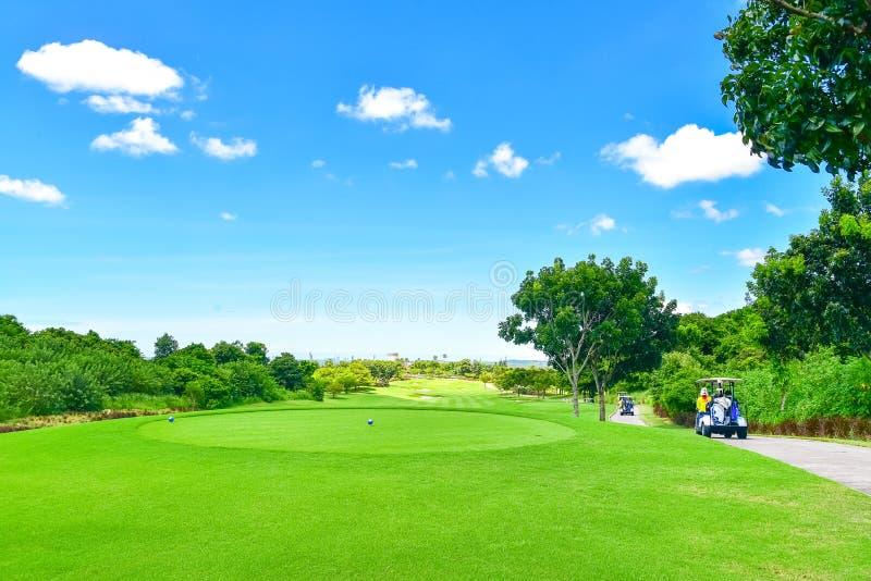 Le beau terrain de golf, la soute de sable et l'herbe verte image libre de droits