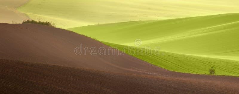 Le beau vert de campagne met en place le paysage au temps de lever de soleil photos libres de droits
