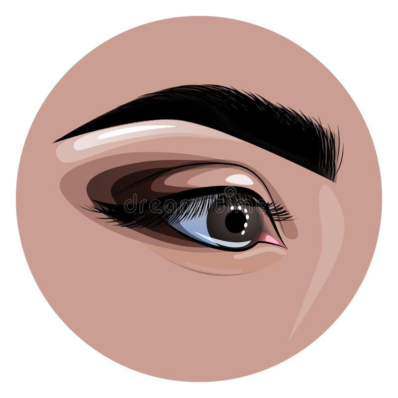 Le beaux oeil et sourcil femelles peints pour la mode conçoivent illustration libre de droits