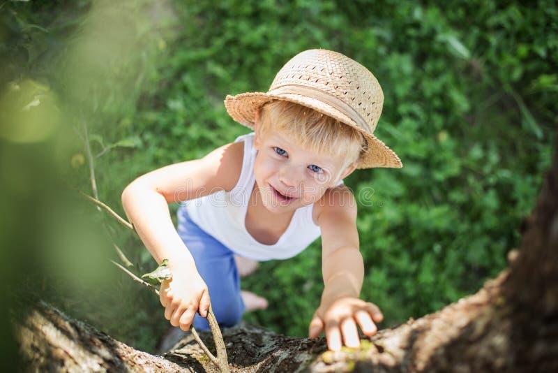 Le bel enfant avec un chapeau de paille s'élève dans un arbre photo stock