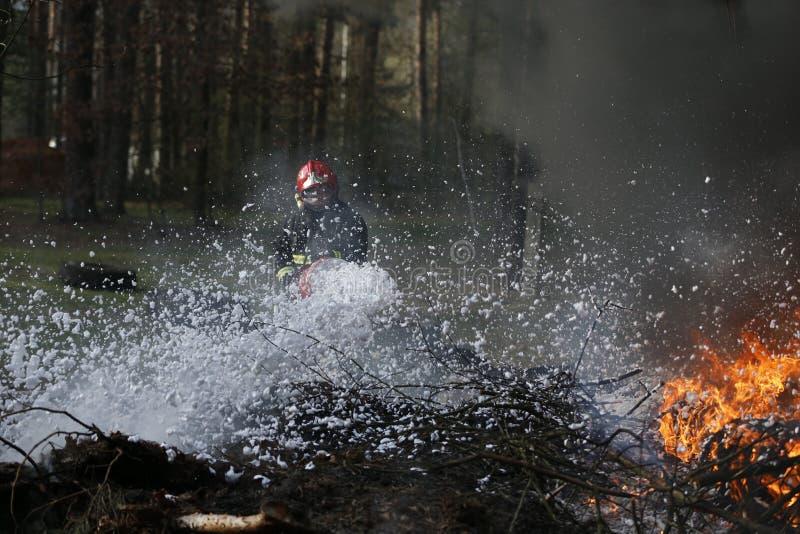 Le Belarus, ville de Gomel Lutte contre l'incendie de la forêt 06 04 2017 Le pompier s'éteint avec un incendie de forêt de mousse photos stock