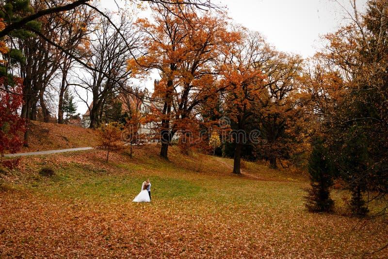 Le belle giovani coppie di nozze stanno insieme felici nel parco fotografia stock