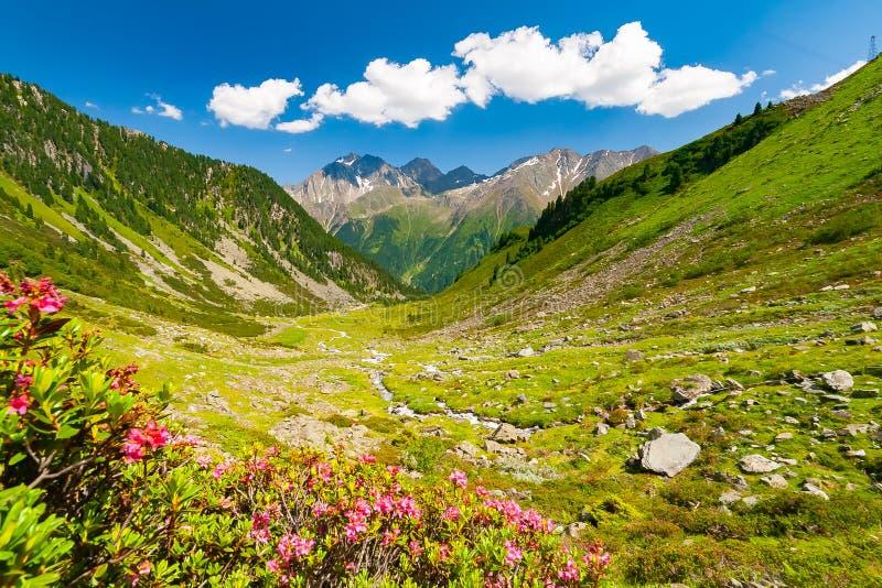 Le belle montagne dell'estate abbelliscono dalla sommità di Knotenspitze nelle alpi di Stubai Tirolo vicino alla nuova capanna de immagine stock