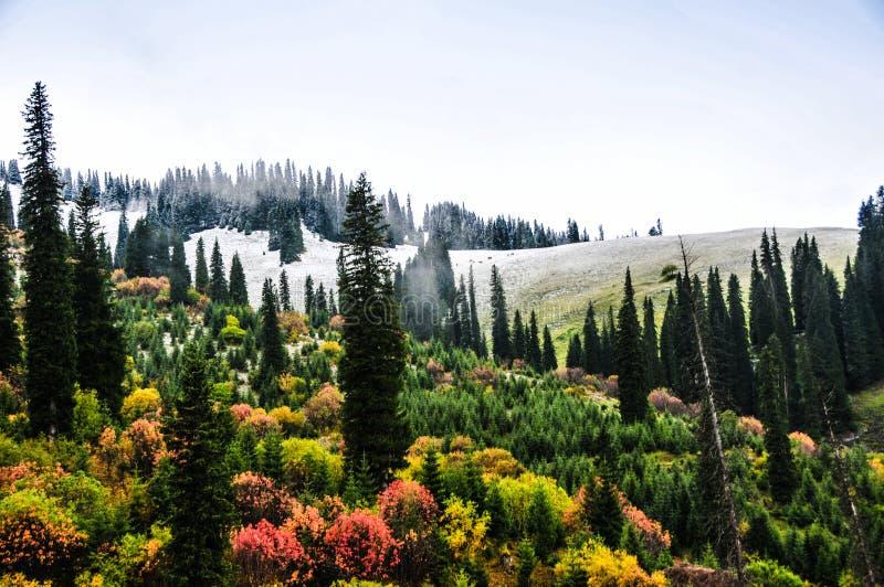 Le belle montagne di Tianshan sono in Xinjiang, Cina immagini stock libere da diritti