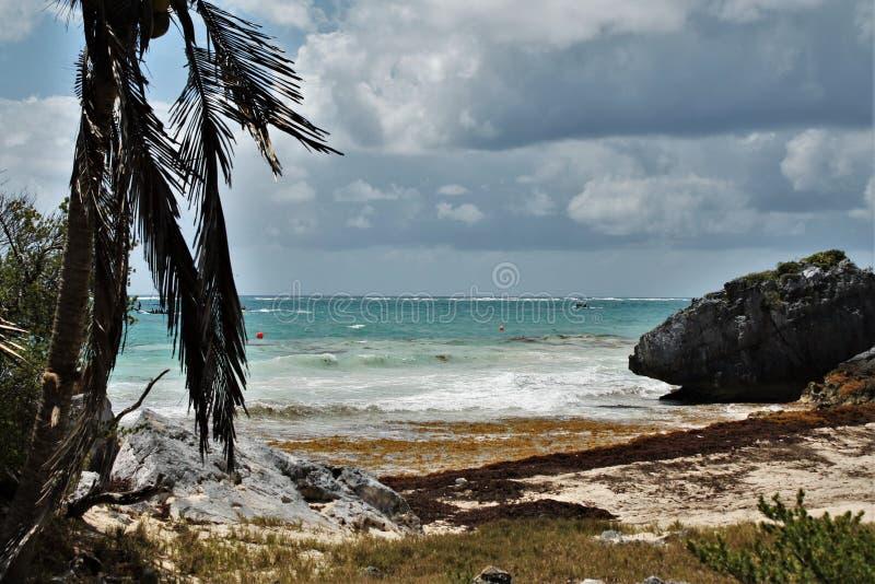 Le belle spiagge di Cancun fotografia stock libera da diritti