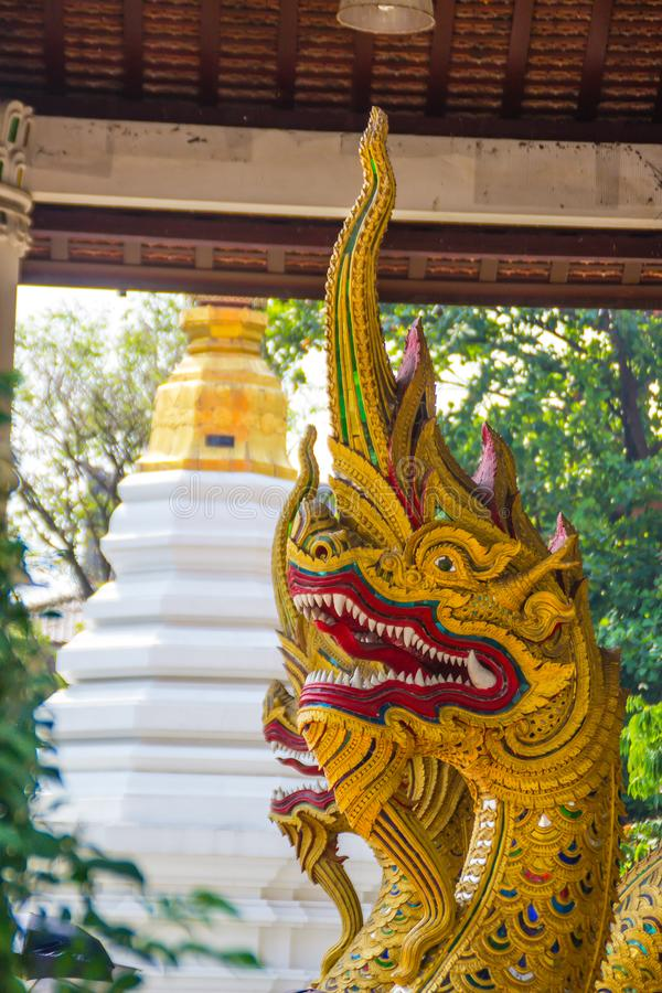 Le belle teste dorate del naga aprono la bocca con le zanne bianche nello stile di lanna modellato in tempio buddista Testa dorat immagine stock