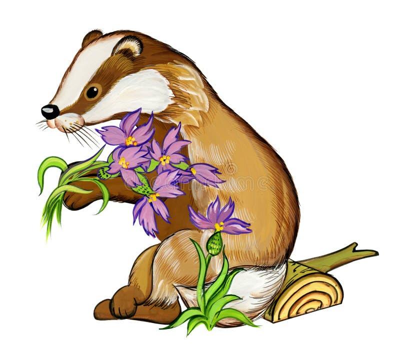 Le blaireau donne les fleurs violettes de forêt, illustration d'aquarelle illustration de vecteur